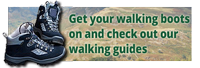 ODG-Walking-guide